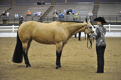 Lazy loper for sale offered for your consideration love me lazy proven beautiful dappled buckskin mare sired by lazy loper and out of shez pretty spendy stopboris Choice Image